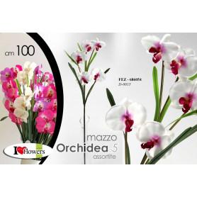 MAZZO ORCHIDEA X 5 ASS. 100CM D